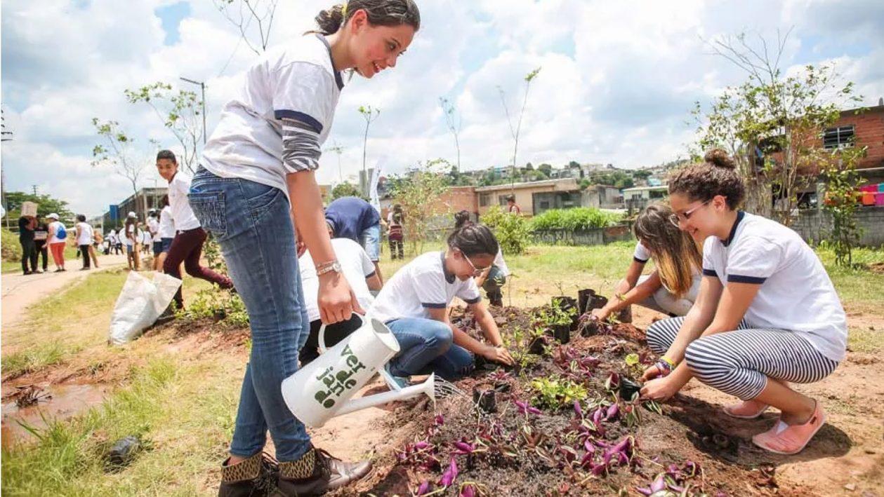 PlantioVerdejando-AU-ExperienciasCriativas