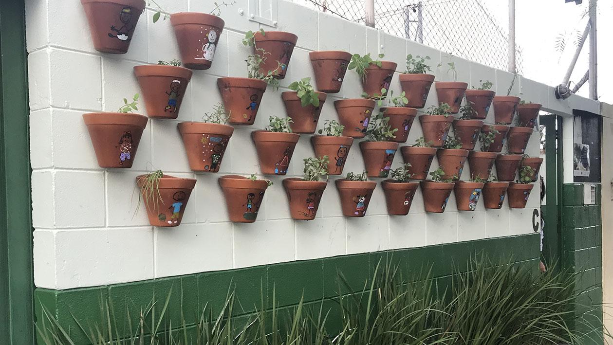 jardimescola